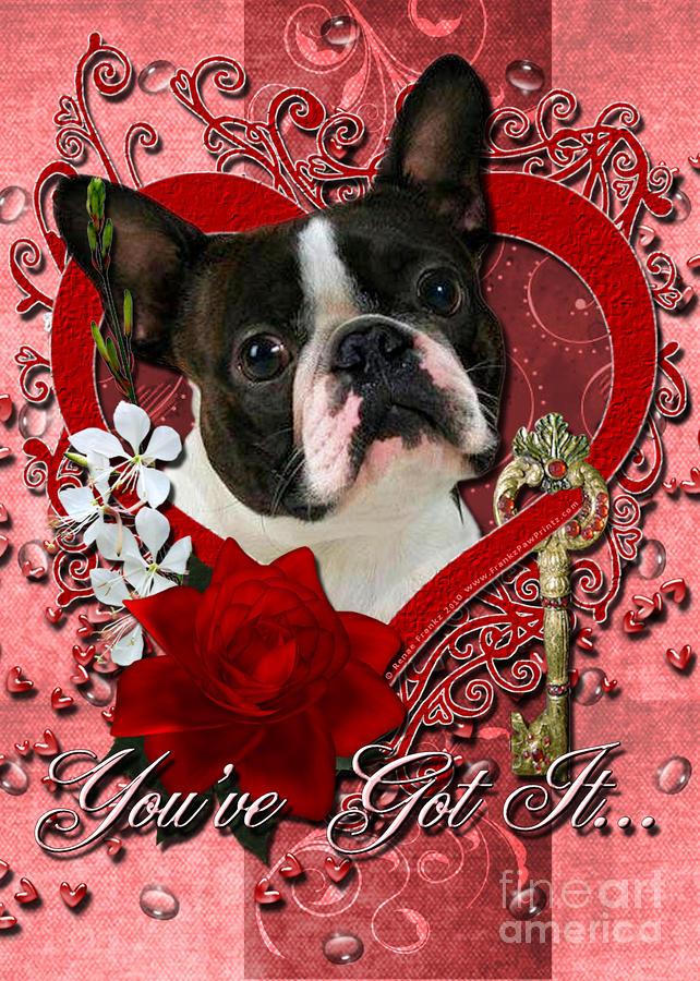 Valentines Key To My Heart Boston Terrier Digital Art By