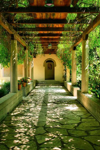 covered garden walkway Vine Covered Walkway Photograph by Steven Ainsworth