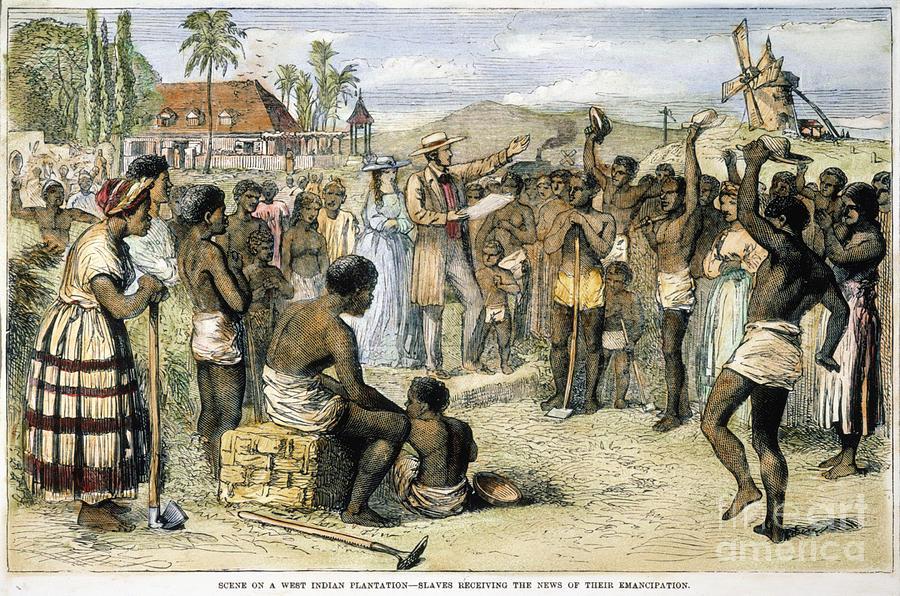 British West Indies – Amelioration Proposals Essay Sample