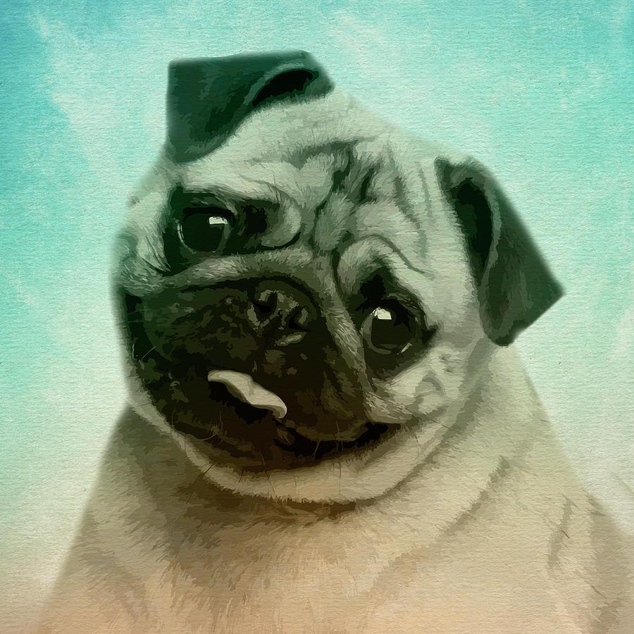 Cute Pug Dog Digital Art By Creativemotions