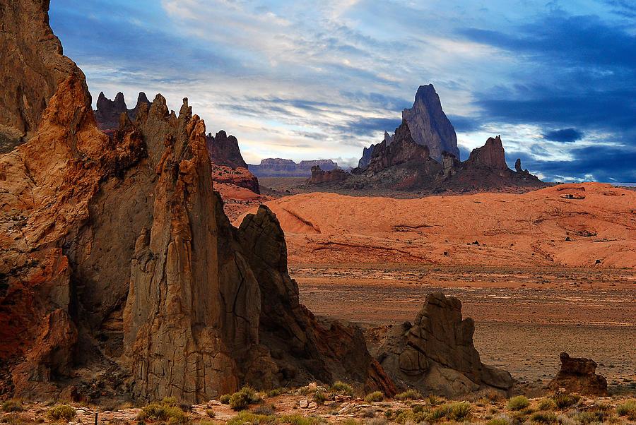 Bags Landscape Rock