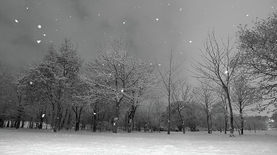 https://i1.wp.com/images.fineartamerica.com/images/artworkimages/mediumlarge/1/snowfall-at-night-mark-watson-kalimistuk.jpg