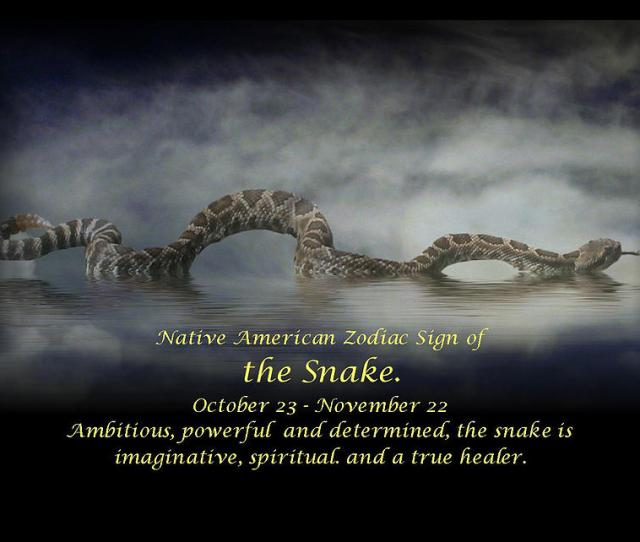 The Native American Zodiac Sign Of The Snake Photograph By Stephanie Laird