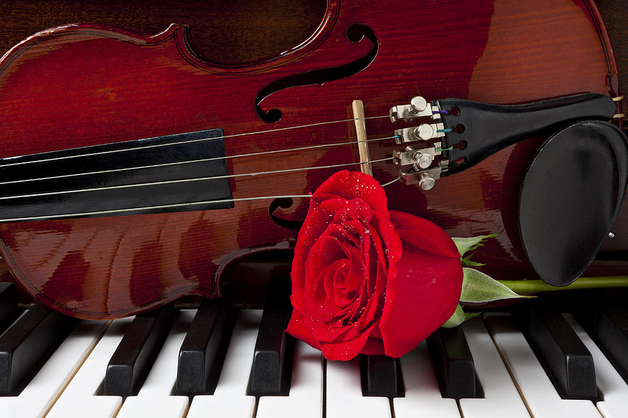 https://i1.wp.com/images.fineartamerica.com/images/artworkimages/mediumlarge/1/violin-and-rose-on-piano-garry-gay.jpg