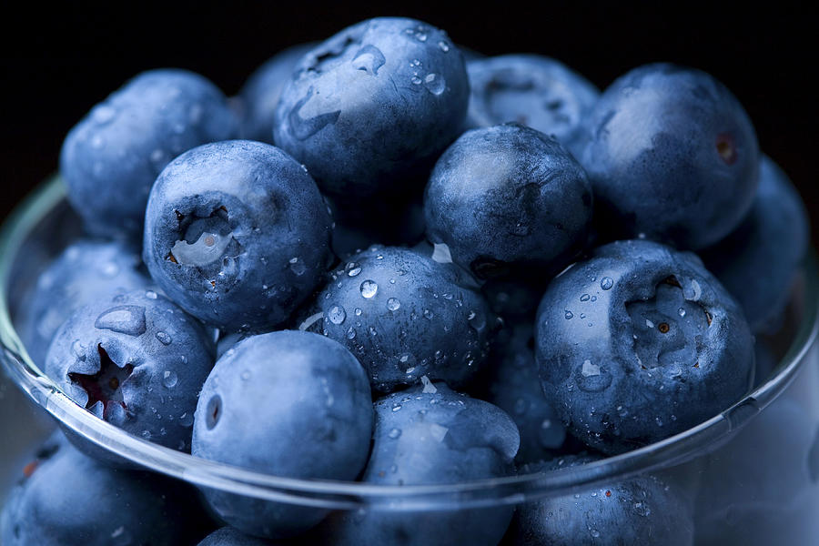 Fresh Blueberry Photograph By Kativ