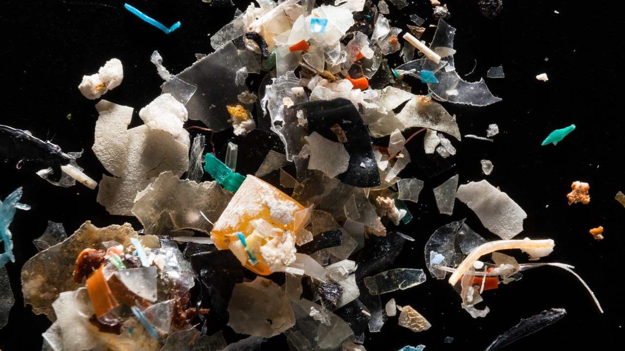 Microplastics circulating in the atmosphere are causing 'plastification' of the world: Study- Technology News, GadgetClock