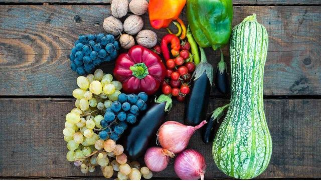 Theme and significance of occasion underlining importance of food security-Health News , GadgetClock