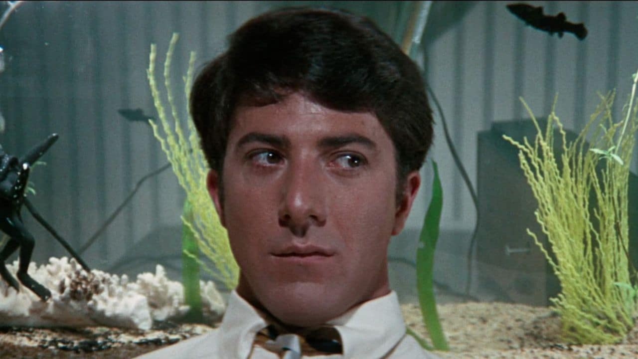 Revisiting Dustin Hoffman's The Graduate: A powerful satire that debunks stereotypes of romance and youth 5