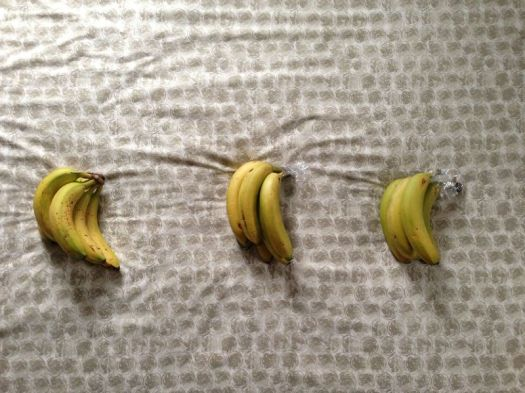 The Best Way to Store Bananas 4