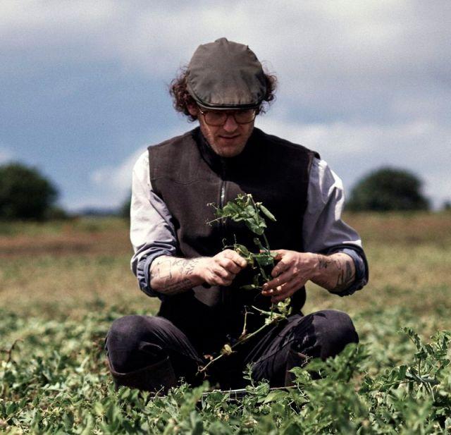 Ben Branson takes herbs very seriously.