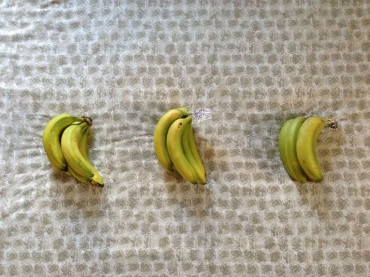 The Best Way to Store Bananas 2