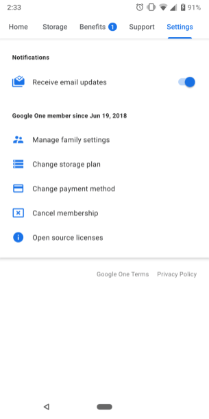 google-one-in-app-6 (1)