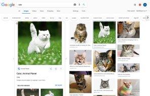 Google Images interace