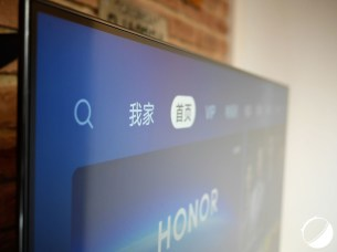 honor vision (14)