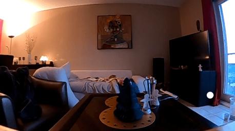 GoPro Hero 8 Black - Champ de vision large