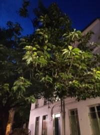 xiaomi-mi-10-lite-sample-photo-nuit- (2)