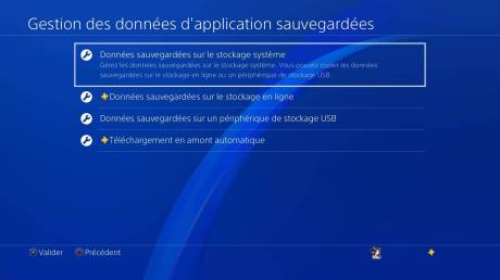 PS+ Playstation 4 PS4 stockage données application syst