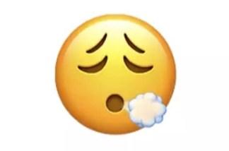 Emoji iOS 14.5-1