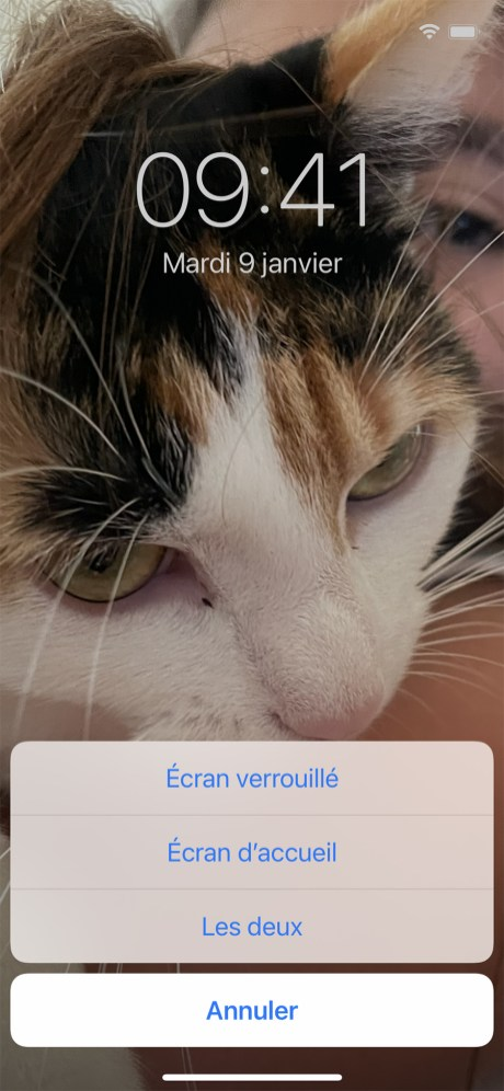 Comment changer son fond d'écran sur iPhone 14