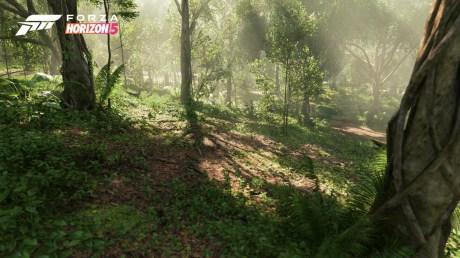 Forza Horizon 5 Biome (4)