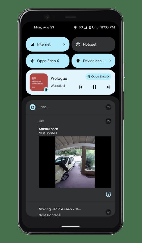 Google Nest Doorbell - Google Home (19)