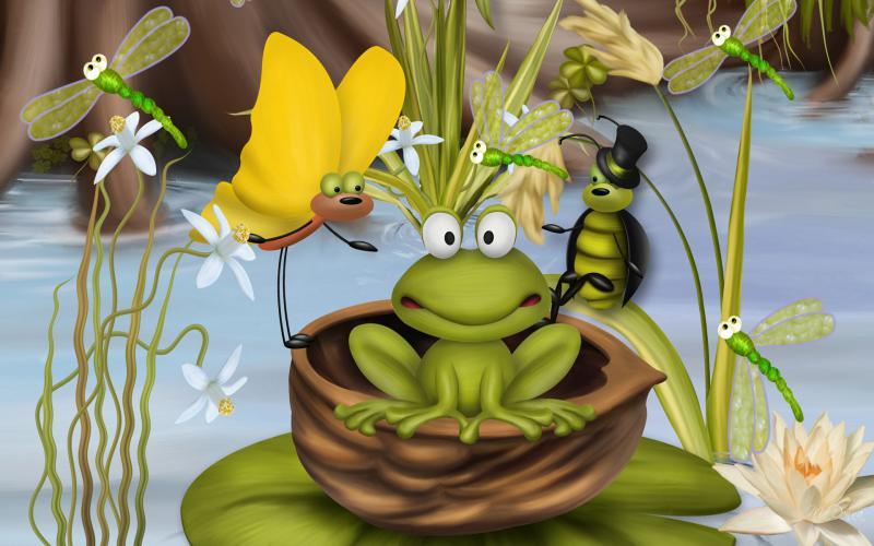 HD Bug Frog Wallpaper Download Free 119479