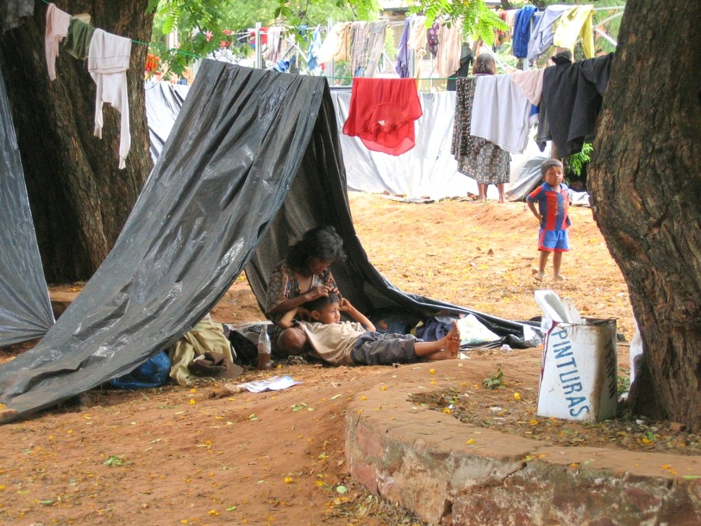 taking out lice