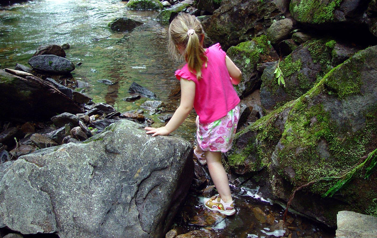 Free Mountain Stream 1 Stock Photo