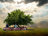 kids-under-tree
