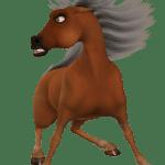 Toon Horse Toonpferd Brown Public Domain Image Freeimg