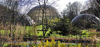 Resultado de imagen de Jardín Botánico de Zurich