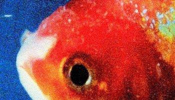 Vince Staples: FM! [Album Review] by @SageTerrence01 - Dead