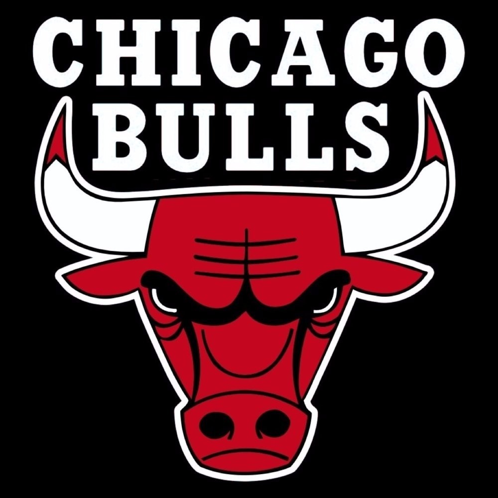 Image result for chicago bulls 1996 logo