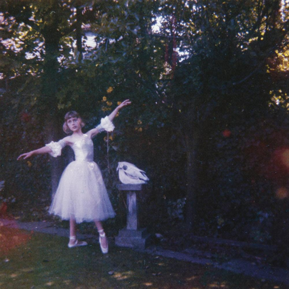 Image result for visions of a life album cover