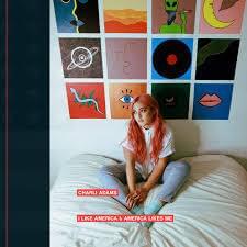 Charli Adams – I Like America & America Likes Me Lyrics | Genius Lyrics
