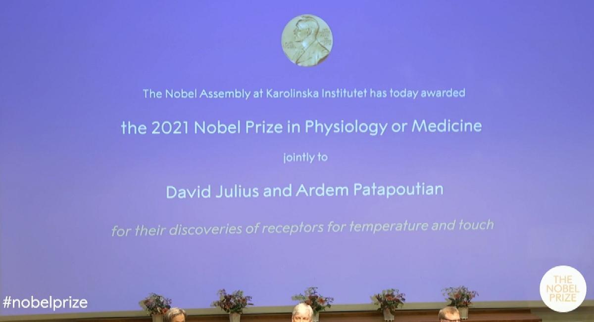 US duo David Julius, Ardem Patapoutian win Nobel Prize in Medicine | GMA News Online