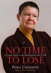 No Time to Lose: A Timely Guide to the Way of the Bodhisattva Pdf Book