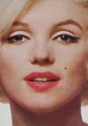 Marilyn Pdf Book