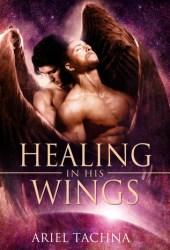 Healing in His Wings (Healing #1)