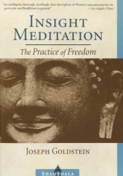 Insight Meditation: A Psychology of Freedom Pdf Book