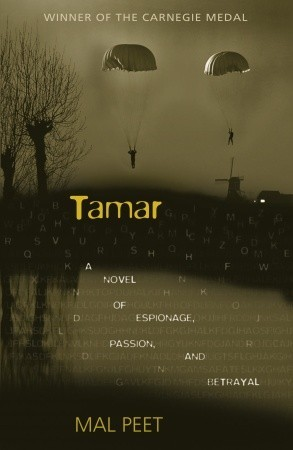 Image result for tamar book cover