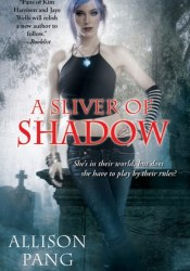A Sliver of Shadow (Abby Sinclair, #2) Pdf Book