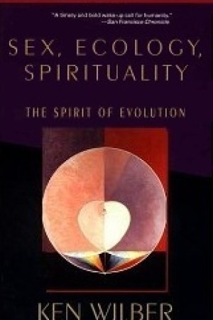 Reading books Sex, Ecology, Spirituality: The Spirit of Evolution