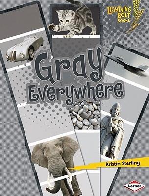 Gray Everywhere (Lightning Bolt Books)