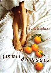 Small Damages Pdf Book