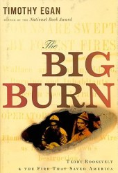 The Big Burn: Teddy Roosevelt and the Fire That Saved America Pdf Book