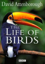 The Life of Birds Pdf Book
