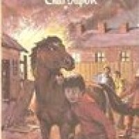 The Children At Green Meadows : Enid Blyton