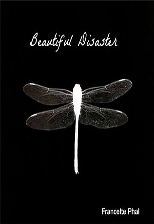 Beautiful Disaster (The Bet, #1)