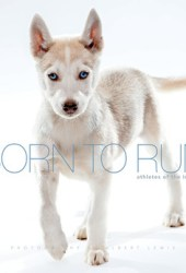 Born to Run: Athletes of the Iditarod